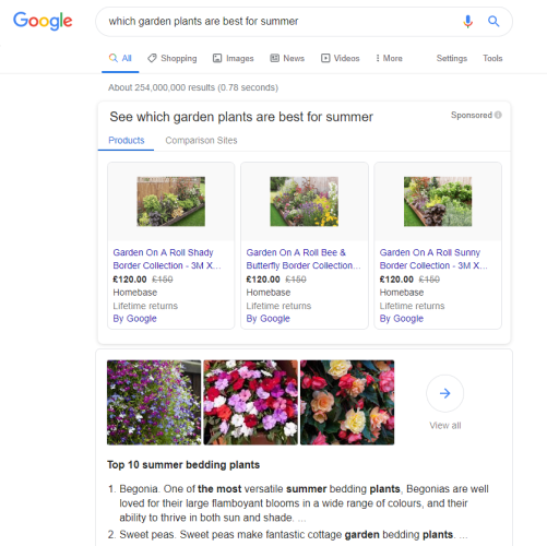 Informational Searches In Google Ads